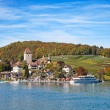 Spiez castle — Stock Photo #45928177