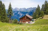 Pěší turistika ve švýcarských alpách — Stock fotografie