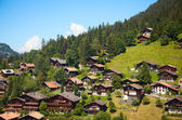 Wengen — Stock Photo