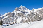 在阿尔卑斯山的冬天 — 图库照片