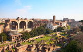 Ruins of the forum — Stock Photo