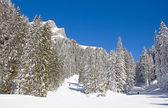 Alpleri'nde kış — Stok fotoğraf