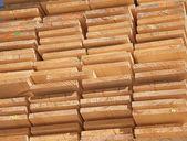 Fresh wooden studs — Stock Photo