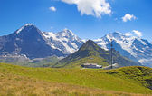 Région de la Jungfrau — Photo