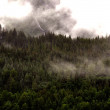 Stock Photo: Juneau Mountainside4