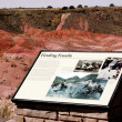 Stockfoto: Petrified Forest - Finding Fossils