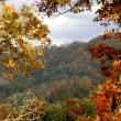 North CarolinMountains — Stockfoto #12829795
