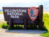 Yellowstone National Park View — 图库照片