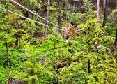 Ketchikan ziplining — Stock Photo