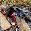 Stock Photo: Campfire burns in grass