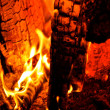 Stock Photo: Campfire Embers