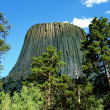 devils tower — Stock Photo