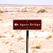 Stock Photo: Petrified Forest - Agate Bridge-1-6