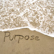 Purpose in the sand — Stock Photo