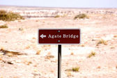 Petrified Forest - Agate Bridge-1-6 — Stock Photo