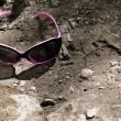 Sunglasses in the woods — Stock Photo