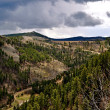 Stock Photo: Black Hills South Dakota-1-10
