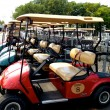 Stock Photo: Golf carts lined up