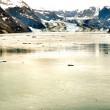 Alaskan Glaciers — Stock Photo #20006777