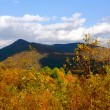 图库照片: North CarolinMountains