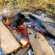 Stock Photo: Campfire burns in grass-1