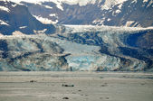 Glacier and Icebergs — Stock Photo