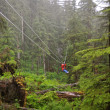 Zip Lining in the middle of a forest — Stock Photo