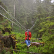Stock Photo: Zip Lining Through Ketchikan