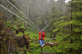 Zip Lining Through Ketchikan — 图库照片
