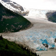 Alaska Glacier — Stock Photo #30890857