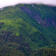 Alaskan Mountains in Juneau — Stock Photo #30897309