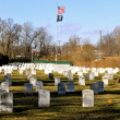 Stock Photo: Military Headstones