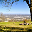 Stock Photo: Point Park Overlook 50