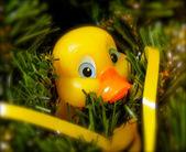 Rubber Ducky Ornament — Stock Photo