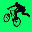 Stock Photo: BMX cycling sport