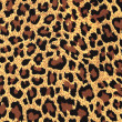 Leopard fur as background — Stock Photo #13601182