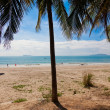 Palm beach, Haynan, China — Foto de Stock
