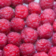 Raspberry dessert macro — Stock Photo