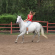 Horsewoman riding — Photo