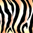 Zebra print image — Stock Photo #24788317