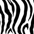 Zebra print image — Stock Photo #27653033