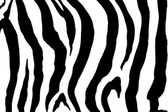 Zebra print image — Stock Photo