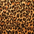 Leopard image fur as background — Stock Photo #30572971