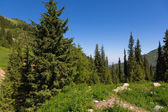 Nature landscape rocky mountains Central Asia — Stock Photo