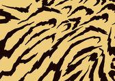 животных рисунок зебры — Стоковое фото