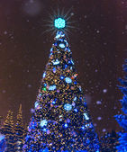 Christmas illuminated night in winter park — Stock Photo