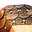 Snake snakeskin pattern — Stock Photo #41835675