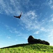 Камень на холме — Стоковое фото