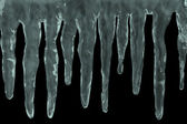 Icicles on black — Stock Photo