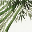 Watercolor painting of bamboo - Stock Photo